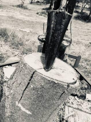 woodsplit2